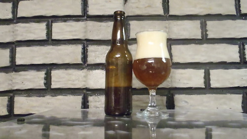 Novice Homebrewer- Batch #5 India Pale Ale Review
